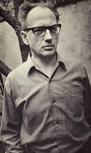 Karel van het Reve in de jaren zestig